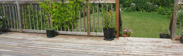 Pressure Treaded Decks.  Repair or Replace?